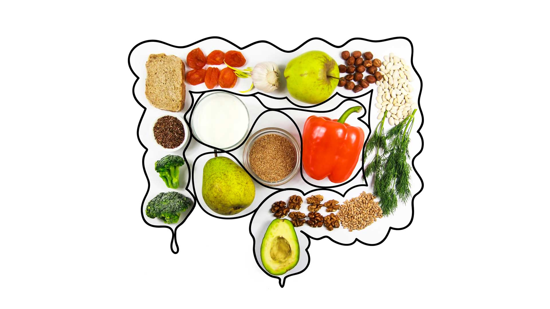 A selection of colourful, healthy food arranged in the shape of a bowel